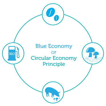 Blue Economy-10 Years, 100 Innovations, 100 Million Jobs, Economics, Natural Res