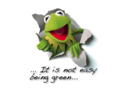 It is not easy being green–Kermit the frog